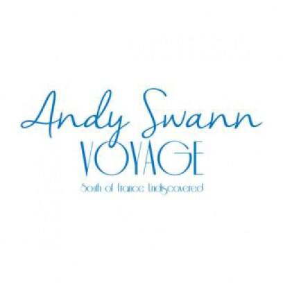 Andy Swann Voyage  logo